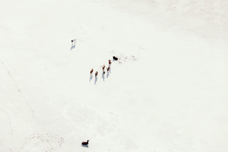 IGNANT-Photography-Zack-Seckler-Aerial-Botswana-008