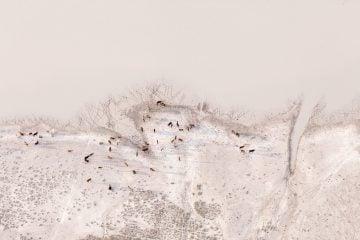 IGNANT-Photography-Zack-Seckler-Aerial-Botswana-009