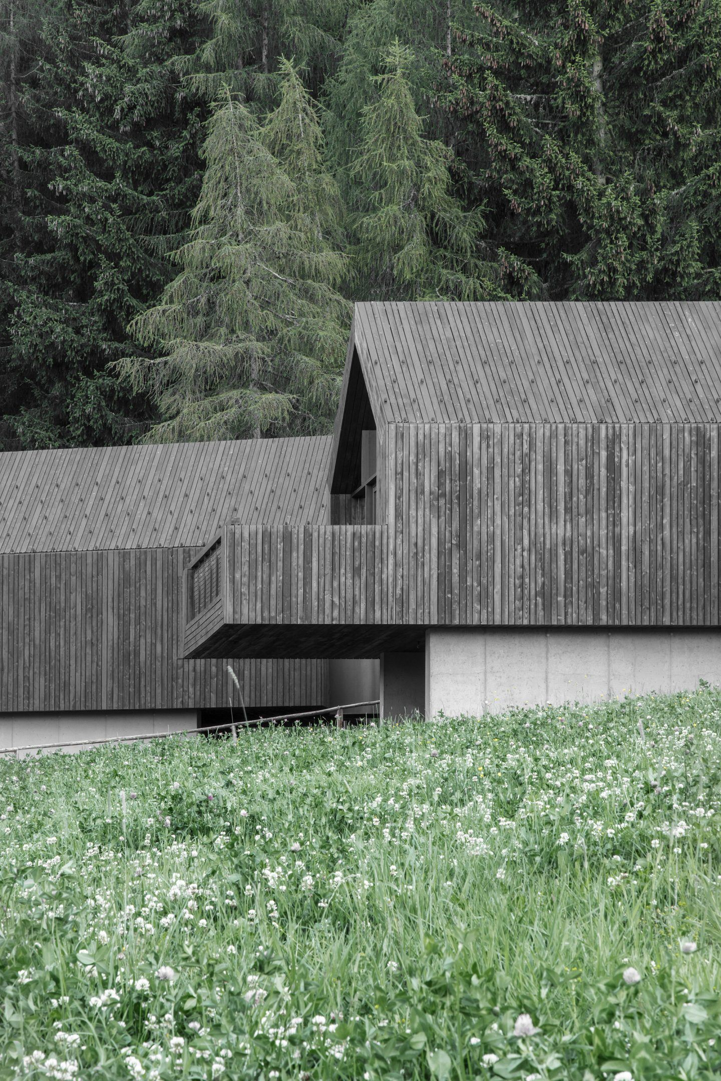 IGNANT-Architecture-Bergmeisterwolf-Fan-Forest-Houses-2