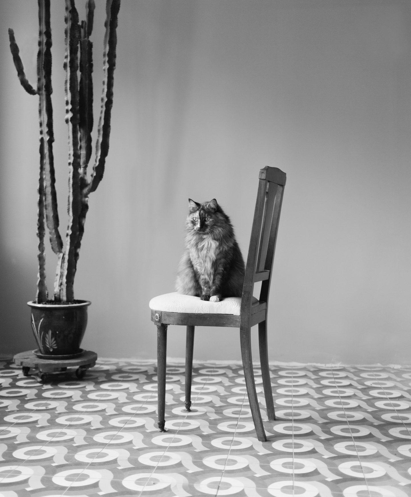 IGNANT-Photography-Alexandre-Souêtre-009