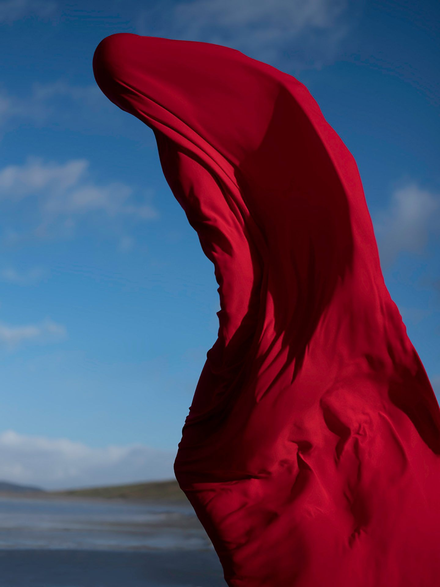 IGNANT-Photography-Eamonn-Doyle-K-9