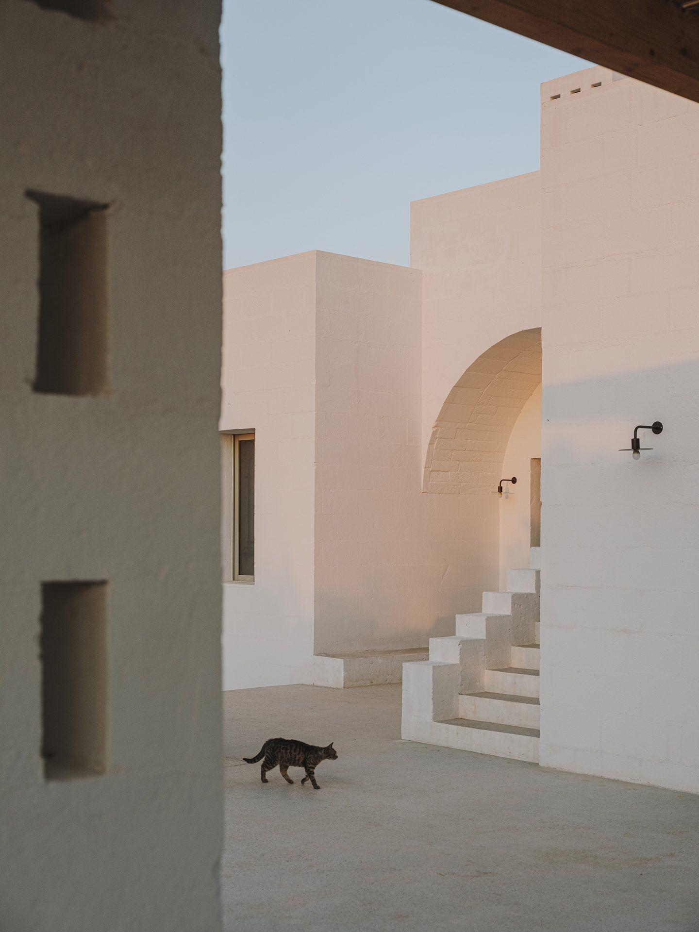 IGNANT-Architecture-Andrew-Trotter-Villa-Cardo-27