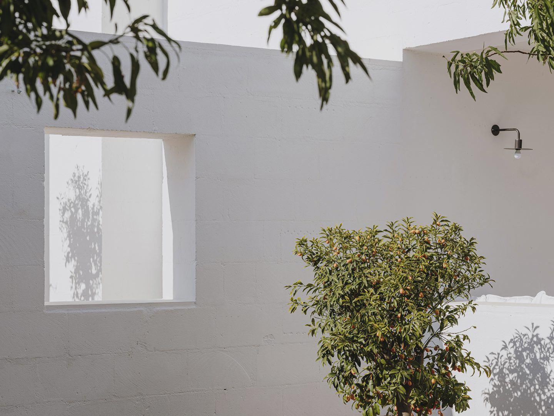 IGNANT-Architecture-Andrew-Trotter-Villa-Cardo-47