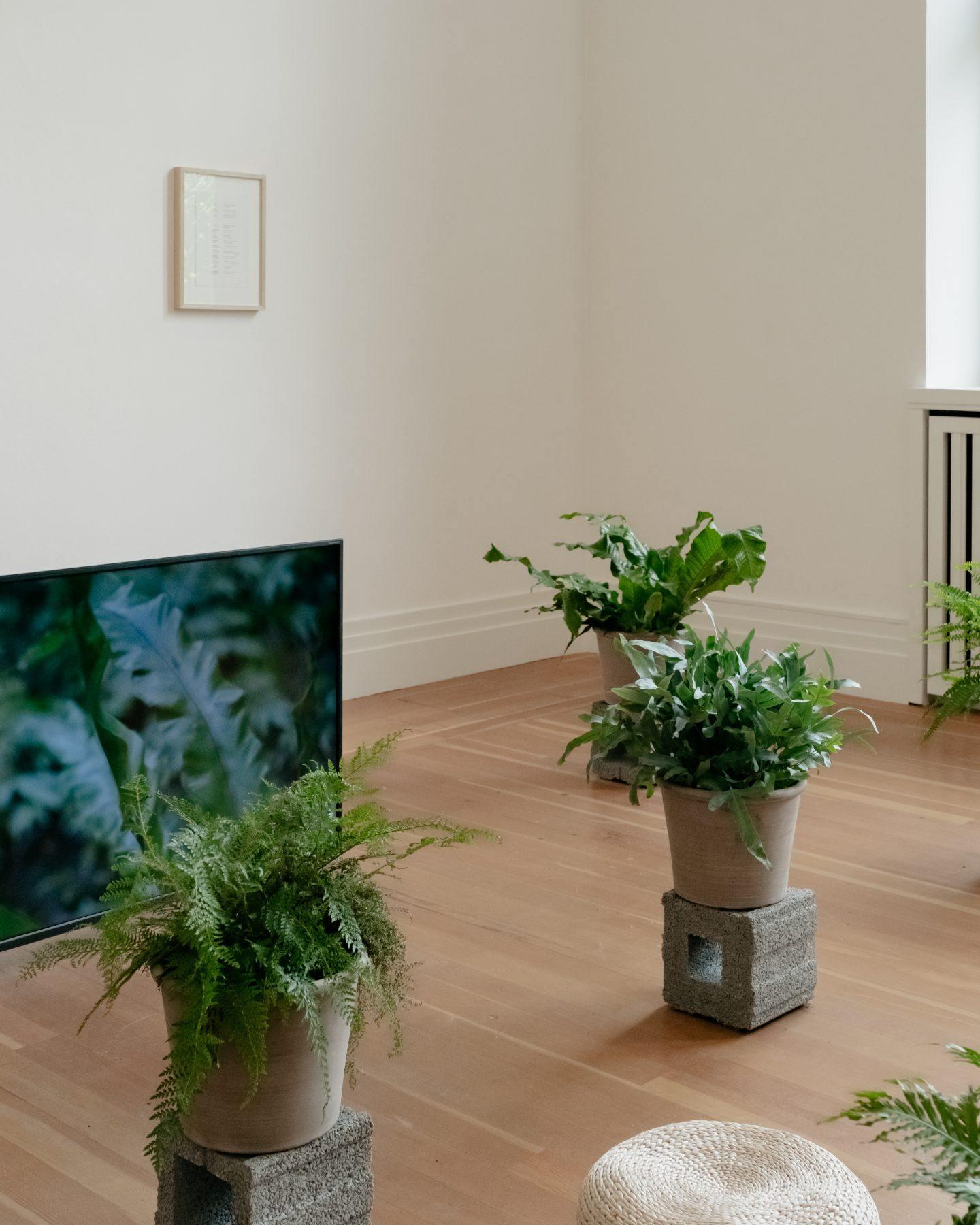 Ignant-Berlin-Garden-of-Earthly-Delights-13