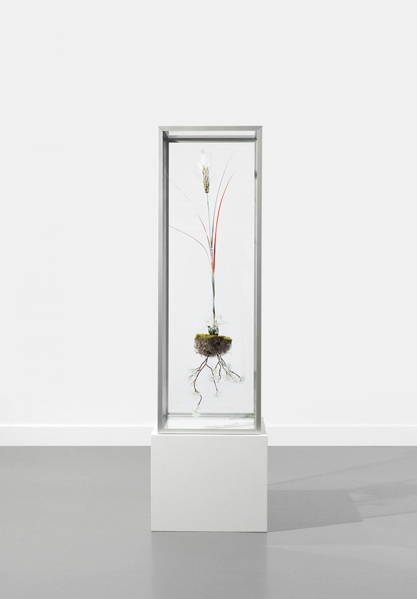 IGNANT-Design-Studio-Hongjie-Yang-004