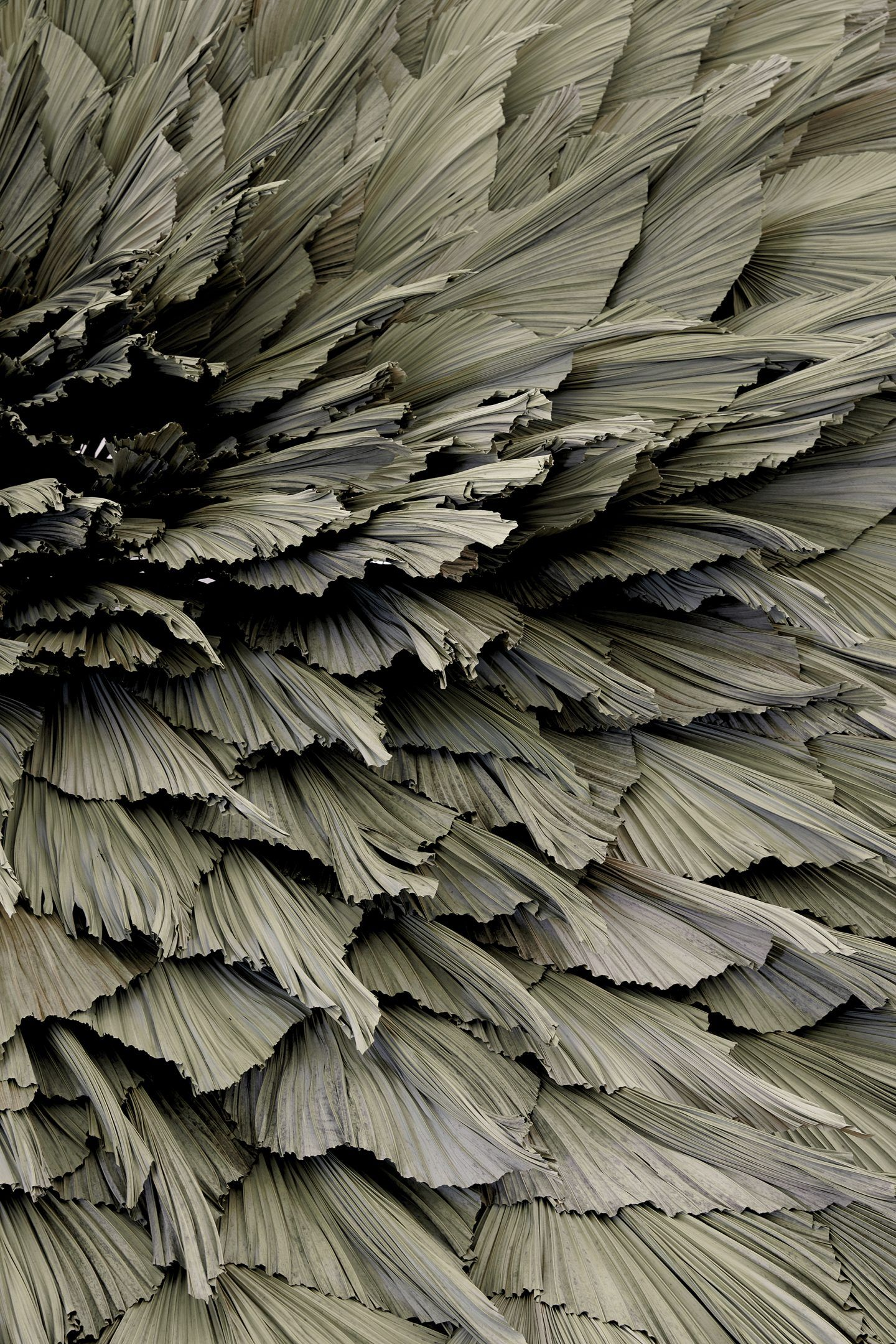 IGNANT-Art-Loose-Leaf-Proximity-7