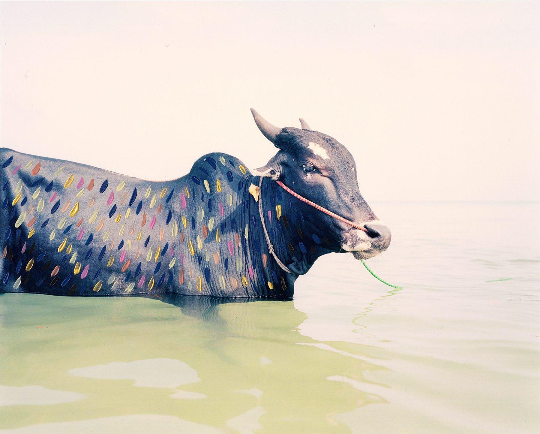 IGNANT-Photography-Vasantha-Yogananthan-Howling-Winds-7