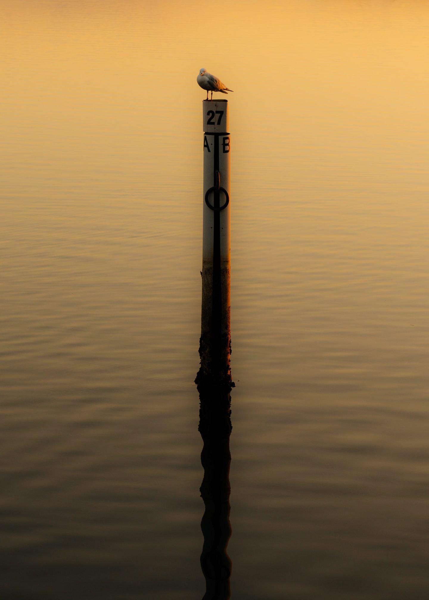 IGNANT-Photography-Daniel-Mueller-Strange-Bloke-28