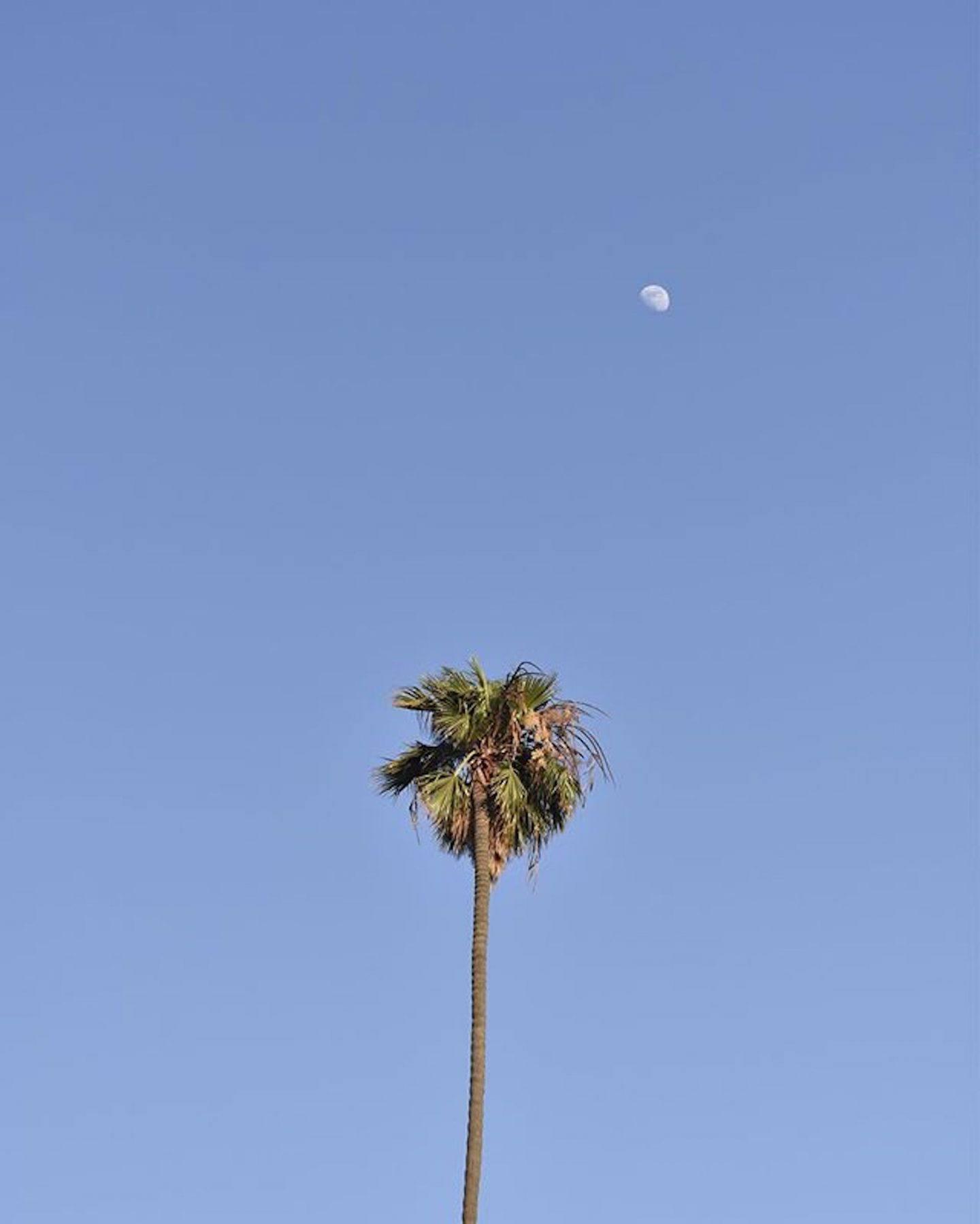 IGNANT-Photography-James-Acai-09