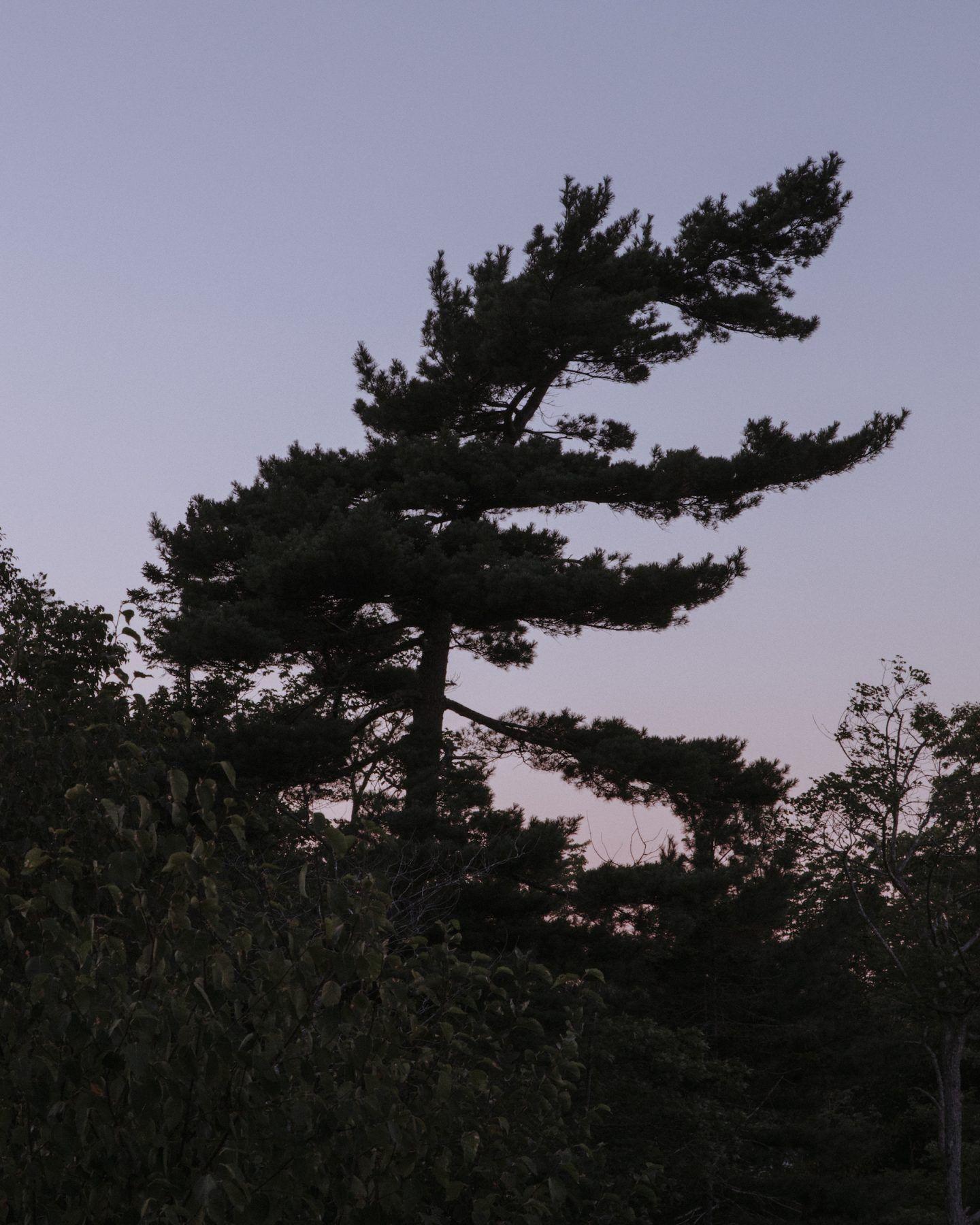 IGNANT-Photography-Landon-Speers-Nova-Scotia-025