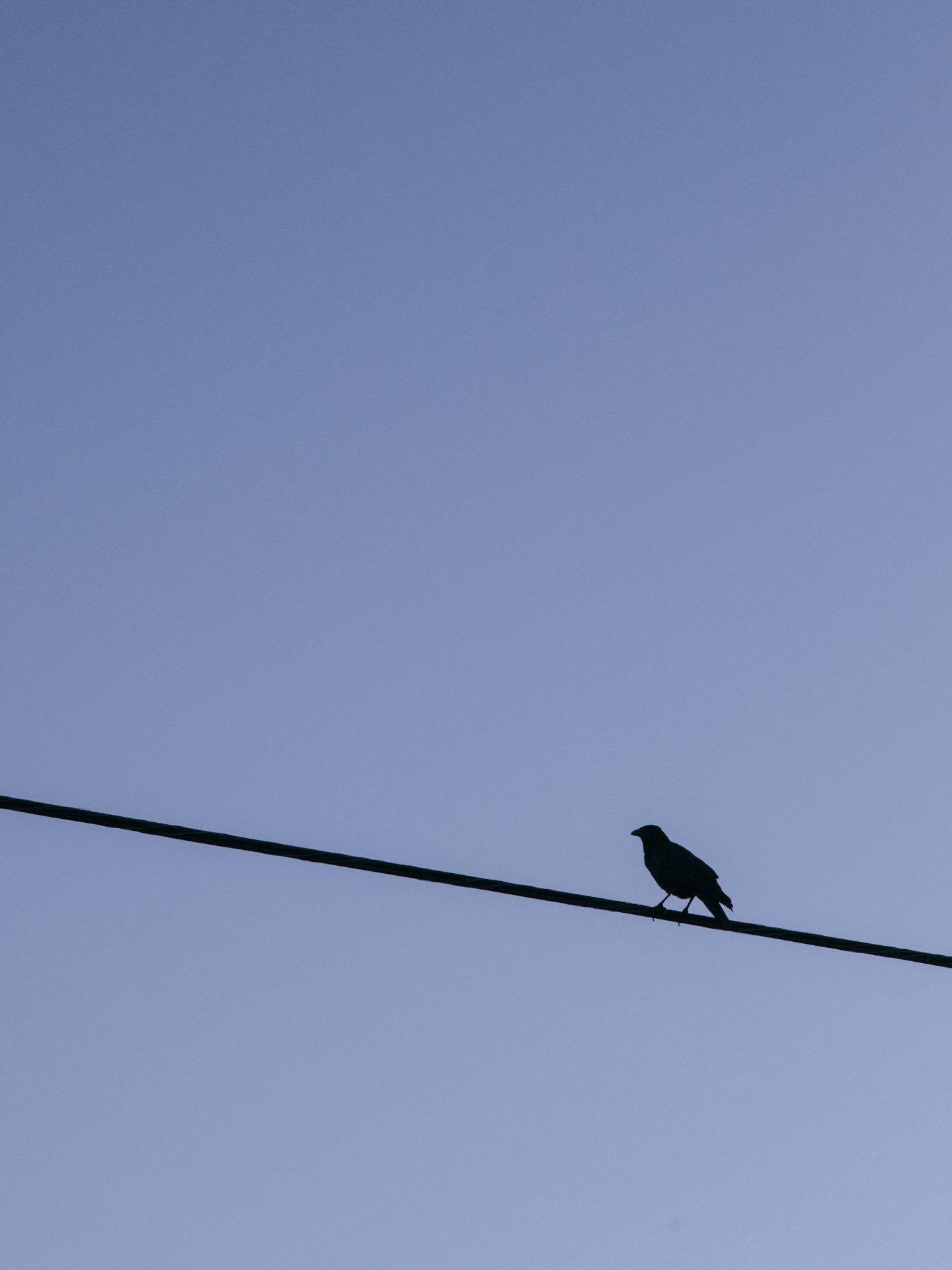 IGNANT-Photography-Landon-Speers-Nova-Scotia-026
