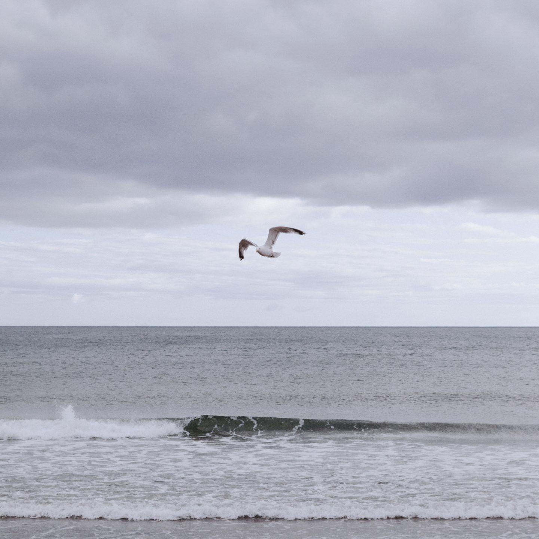 IGNANT-Photography-Landon-Speers-Nova-Scotia-07
