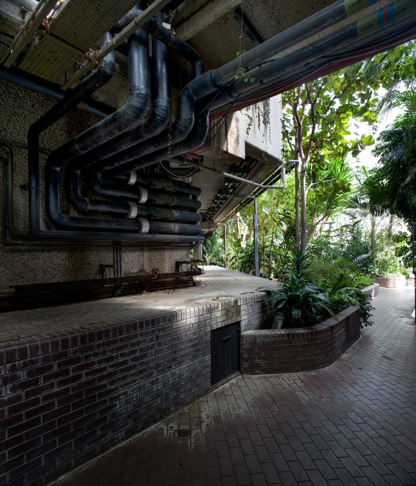 IGNANT-Travel-Luke-Hayes-The-Barbican-Conservatory-010