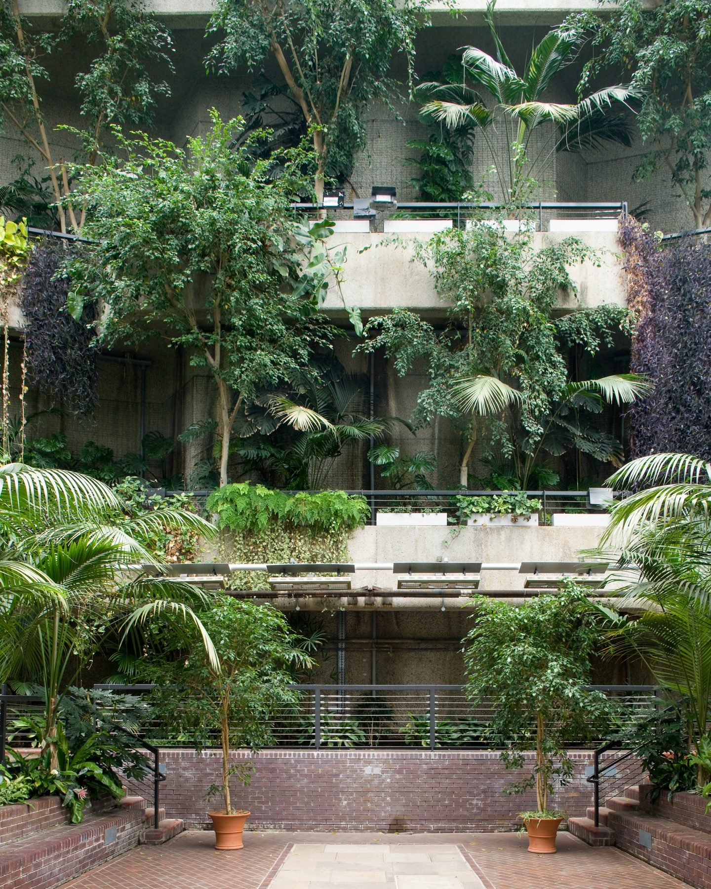 IGNANT-Travel-Luke-Hayes-The-Barbican-Conservatory-013