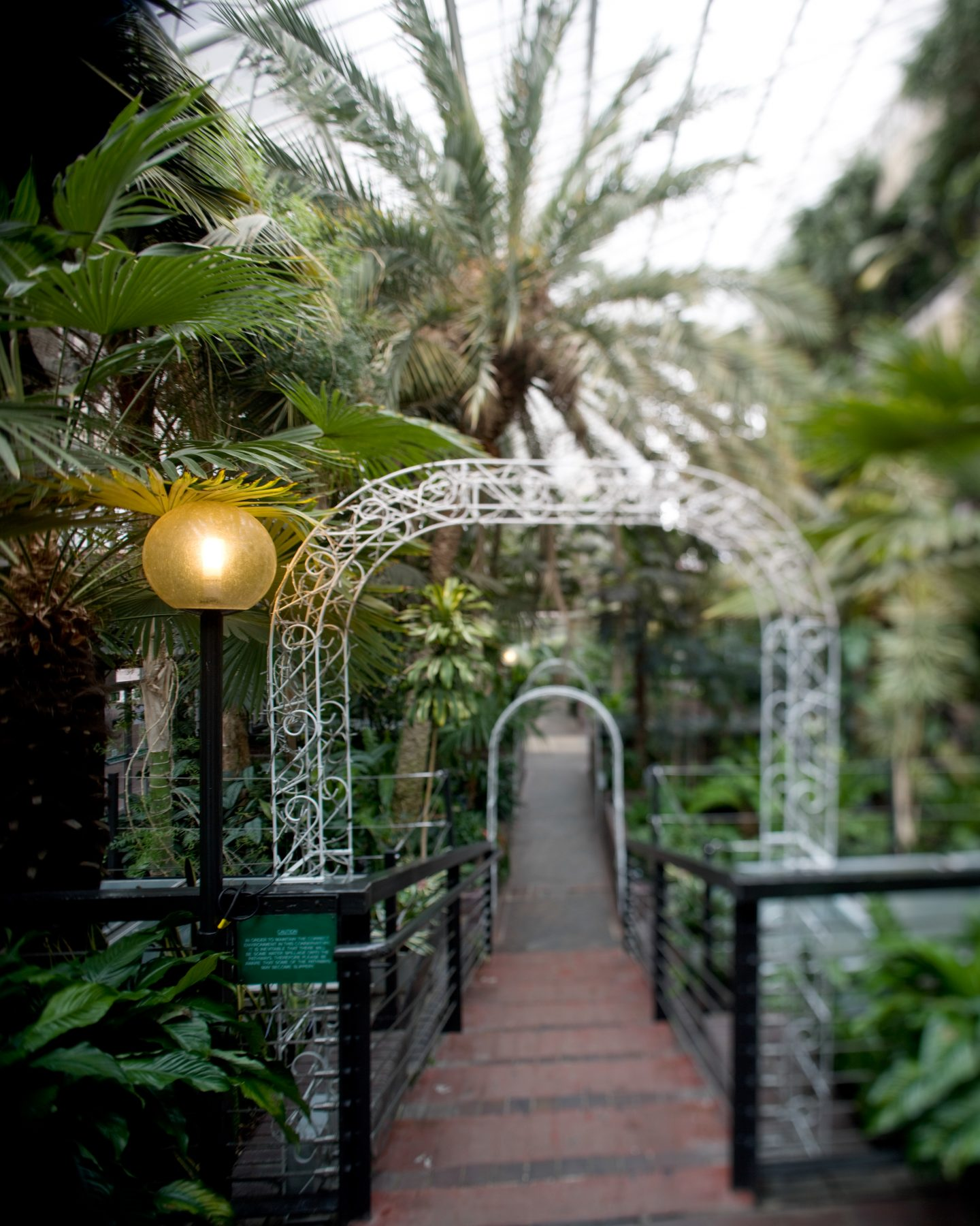 IGNANT-Travel-Luke-Hayes-The-Barbican-Conservatory-014