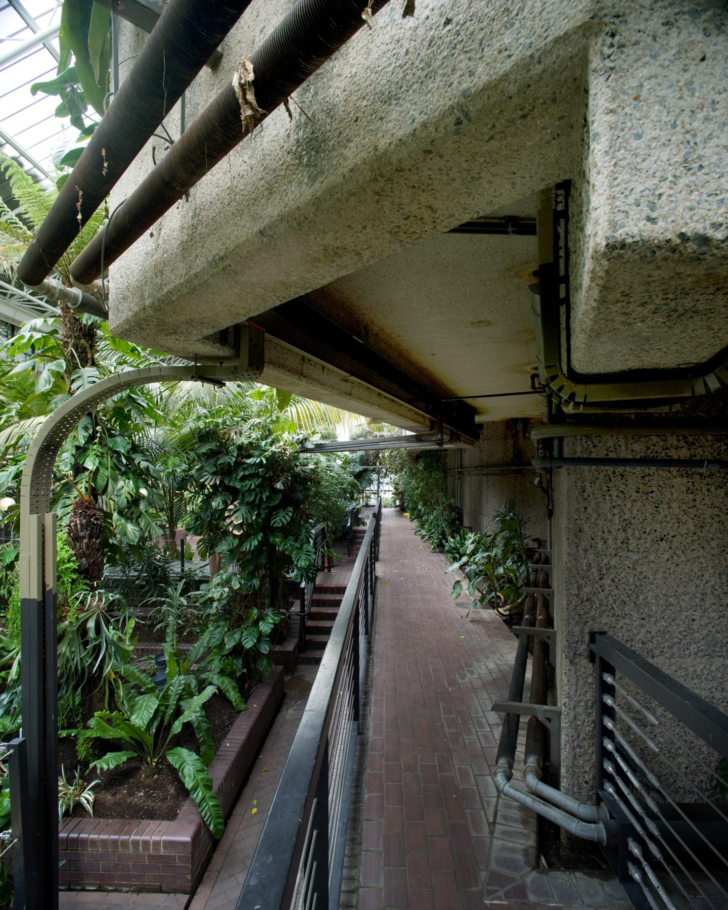 IGNANT-Travel-Luke-Hayes-The-Barbican-Conservatory-07