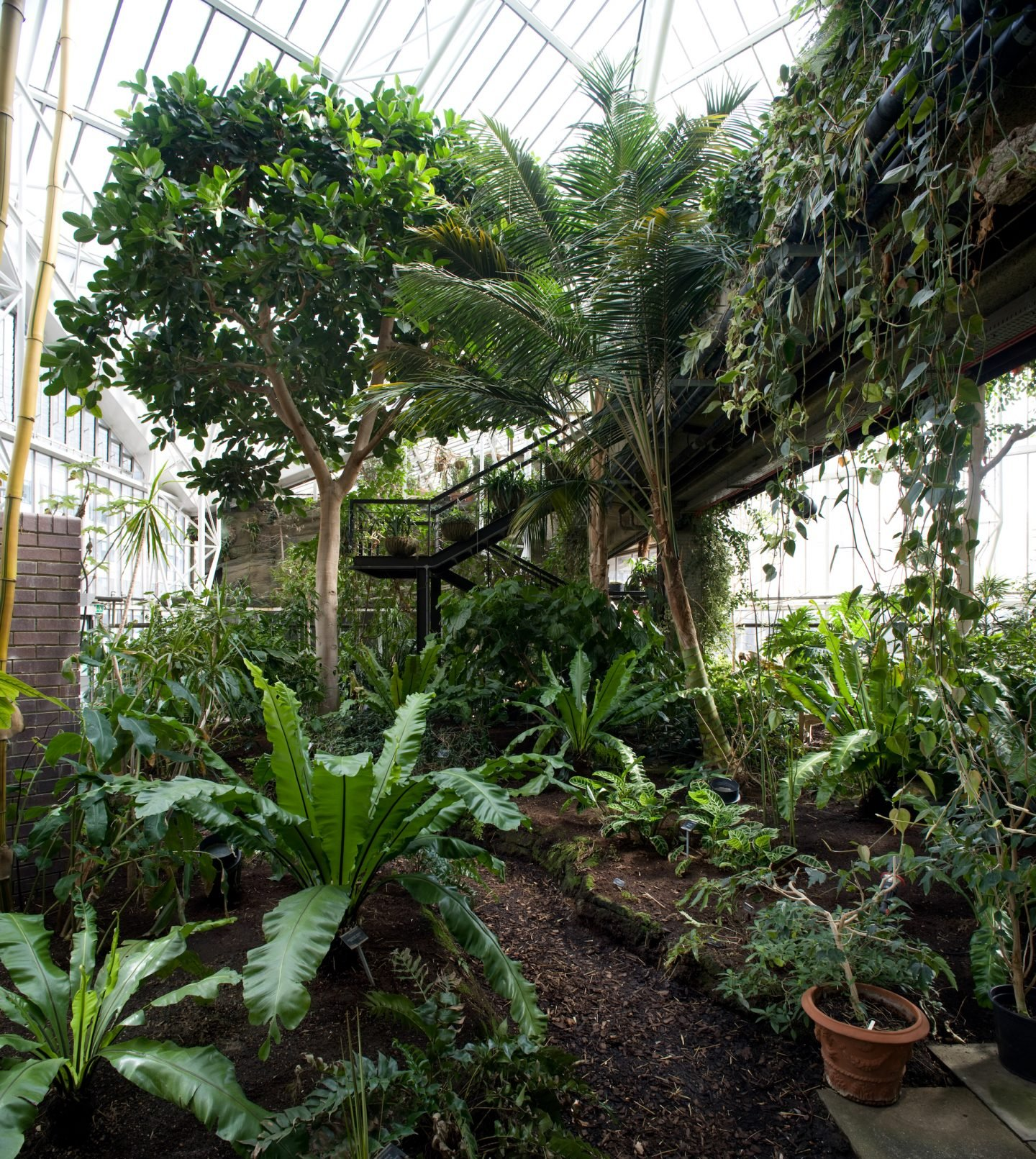 IGNANT-Travel-Luke-Hayes-The-Barbican-Conservatory-09
