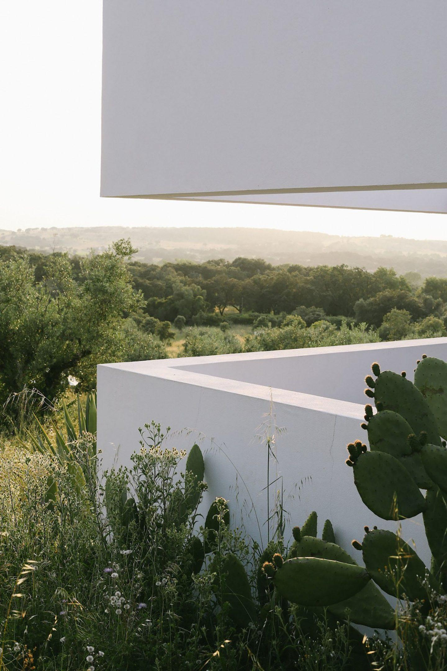 IGNANT-Architecture-Alepo-Vora-Villa-Extramuros-011