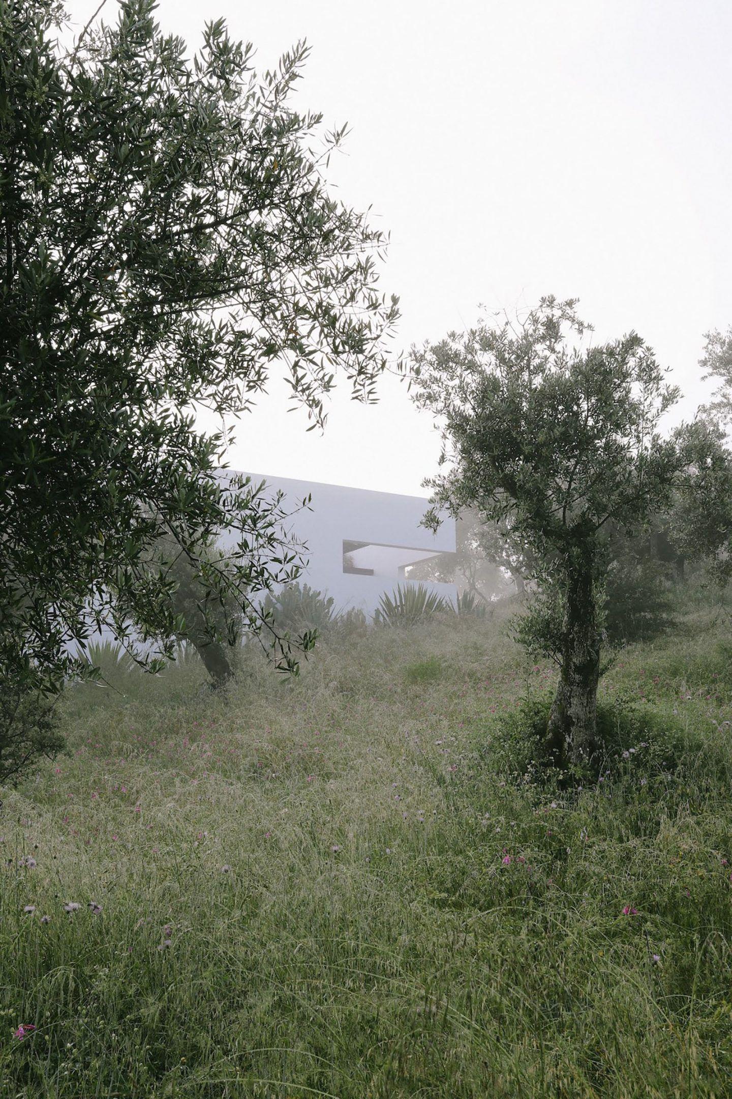 IGNANT-Architecture-Alepo-Vora-Villa-Extramuros-013