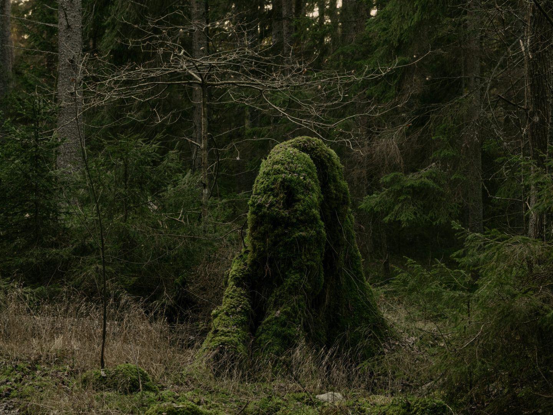 IGNANT-Photography-Robert-Rieger-Sweden-024