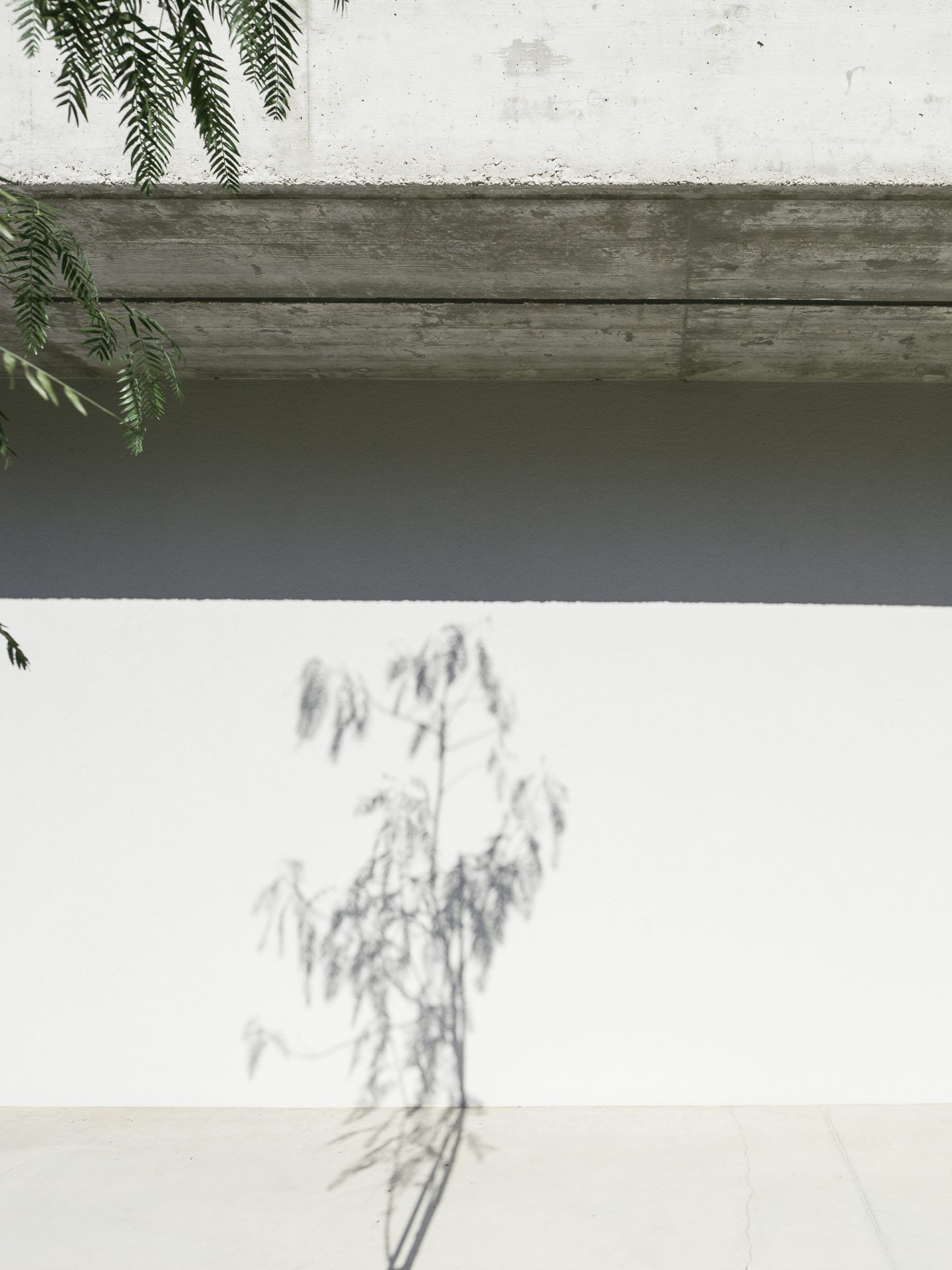 IGNANT-Architecture-BDArquitectura-Gloma-House-012