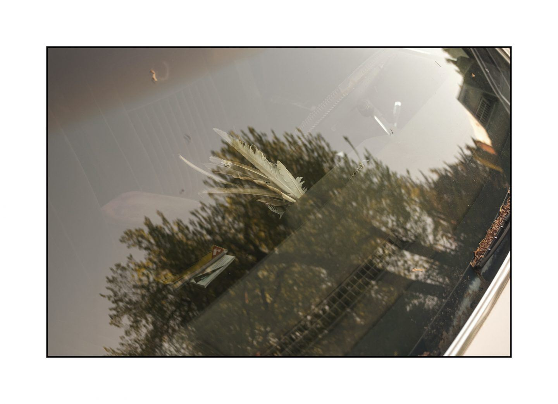 IGNANT-Photography-Alex-Fleming-01