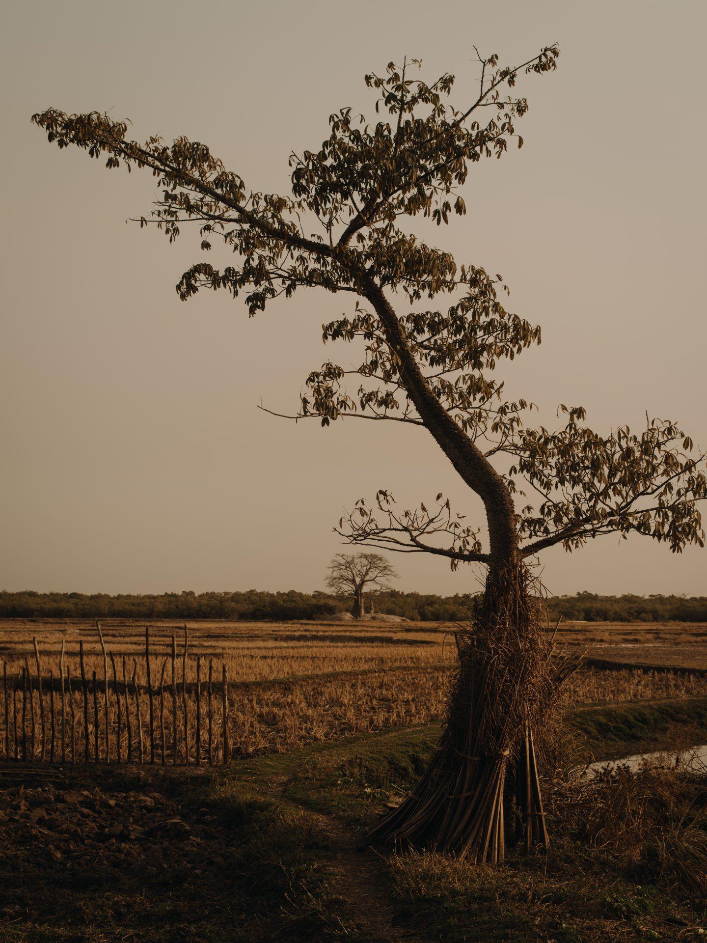 IGNANT-Photography-Lapalus-25