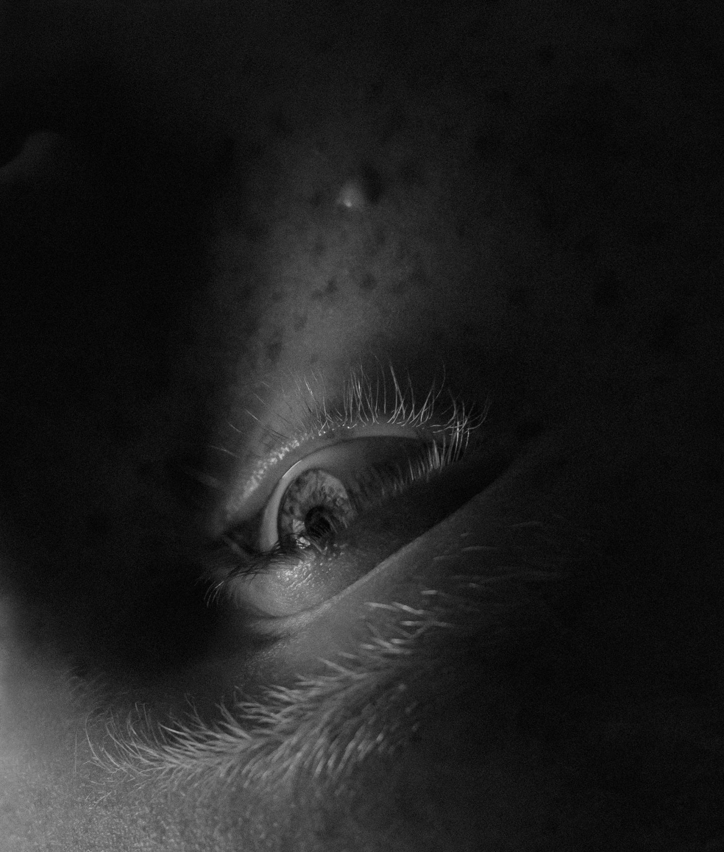 IGNANT-Photography-MarcusSchaefer-20