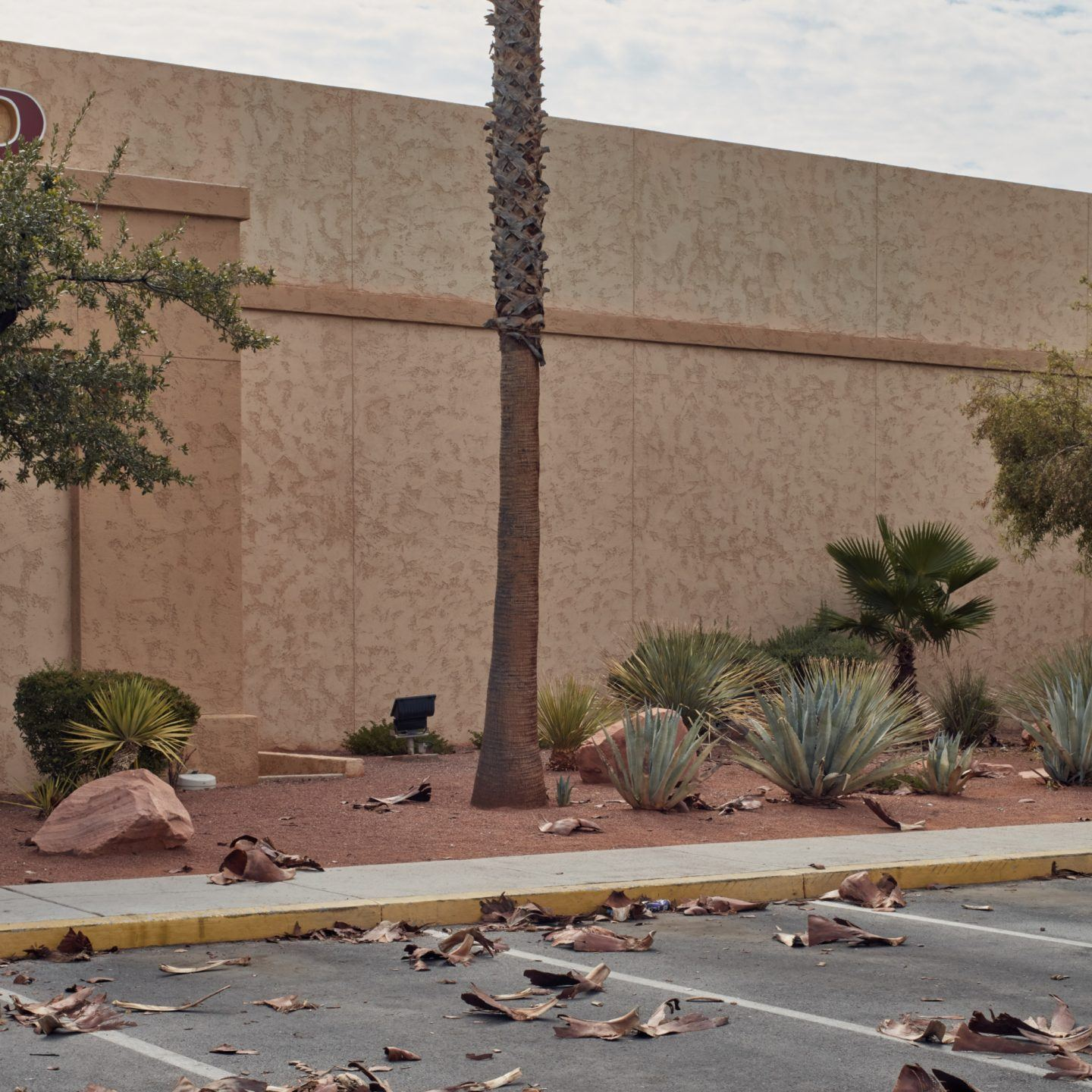IGNANT-Photography-Ross-Mantle-North-Las-Vegas-014