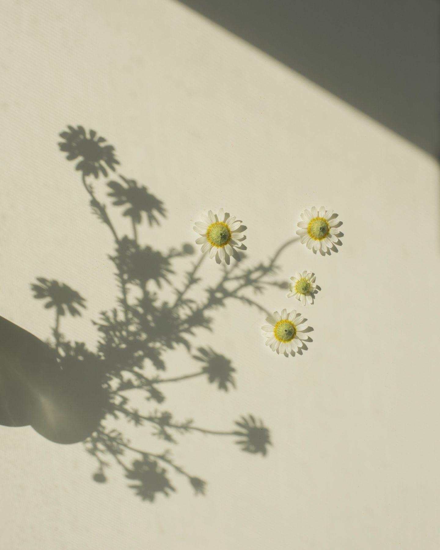 IGNANT-Photography-Varga-15