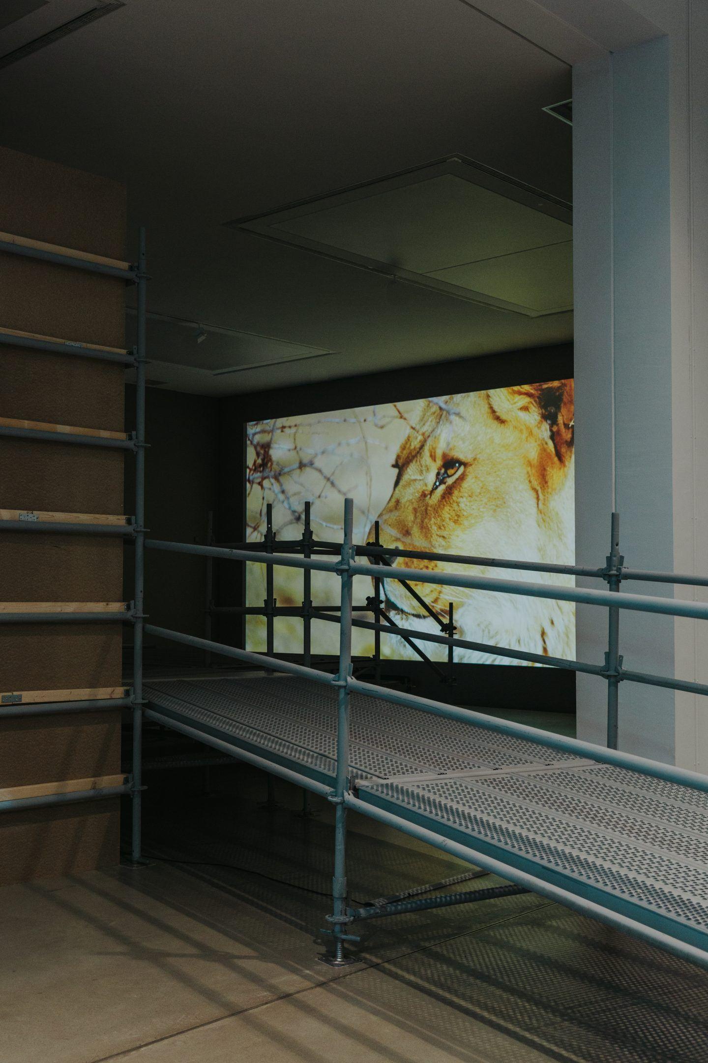 IGNANT-Art-KunsthalleMannheim-Upheaval-MarinaDenisova-14