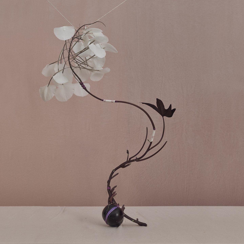 IGNANT-Photograpy-Donimik-Tarabanski-Roses-New-02