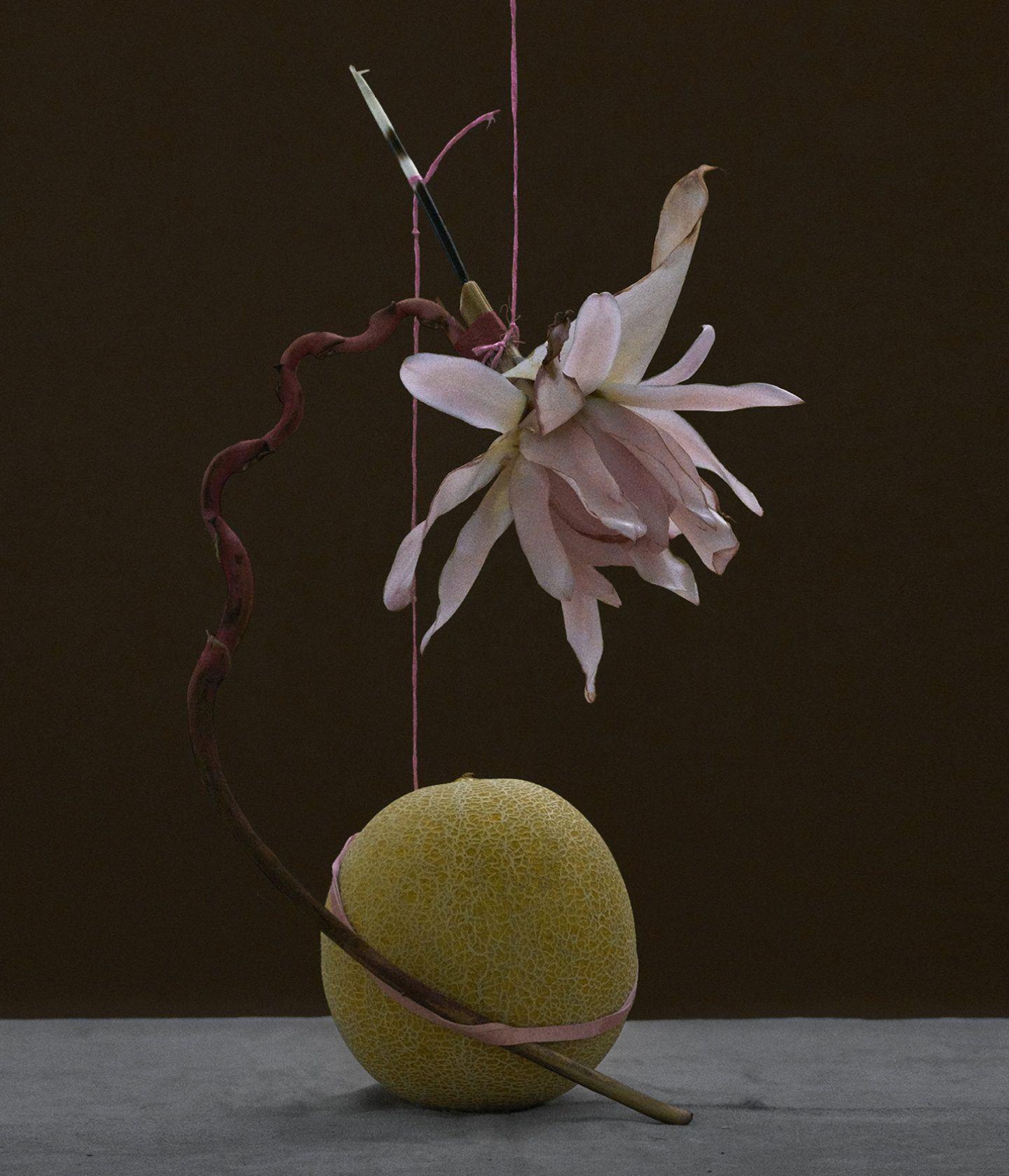 IGNANT-Photograpy-Donimik-Tarabanski-Roses-New-08