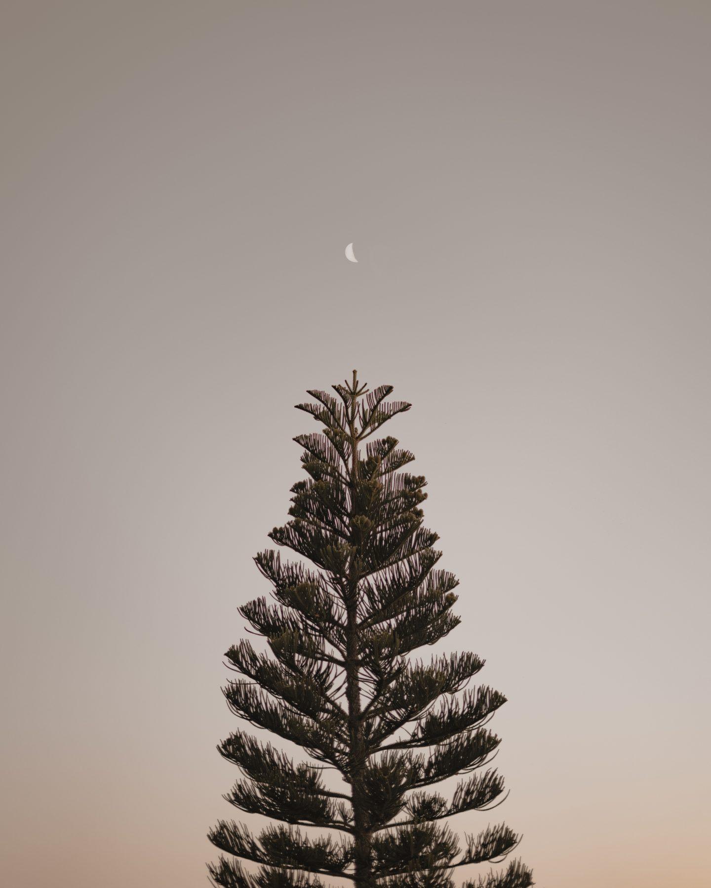 IGNANT-Photography-Paez-1