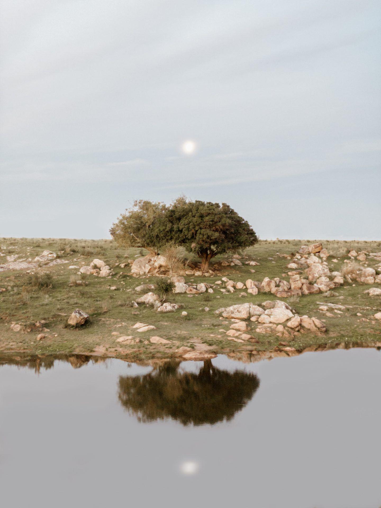 IGNANT-Photography-Paez-12