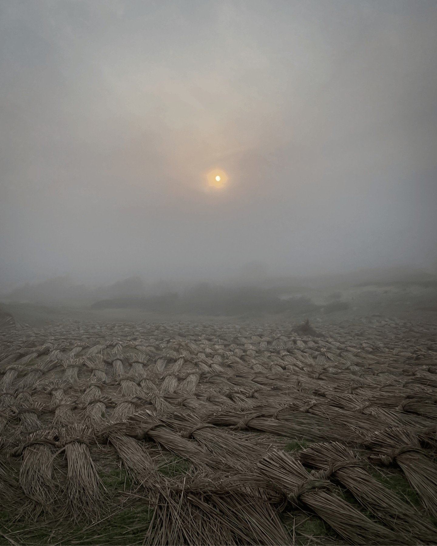 IGNANT-Photography-Paez-32