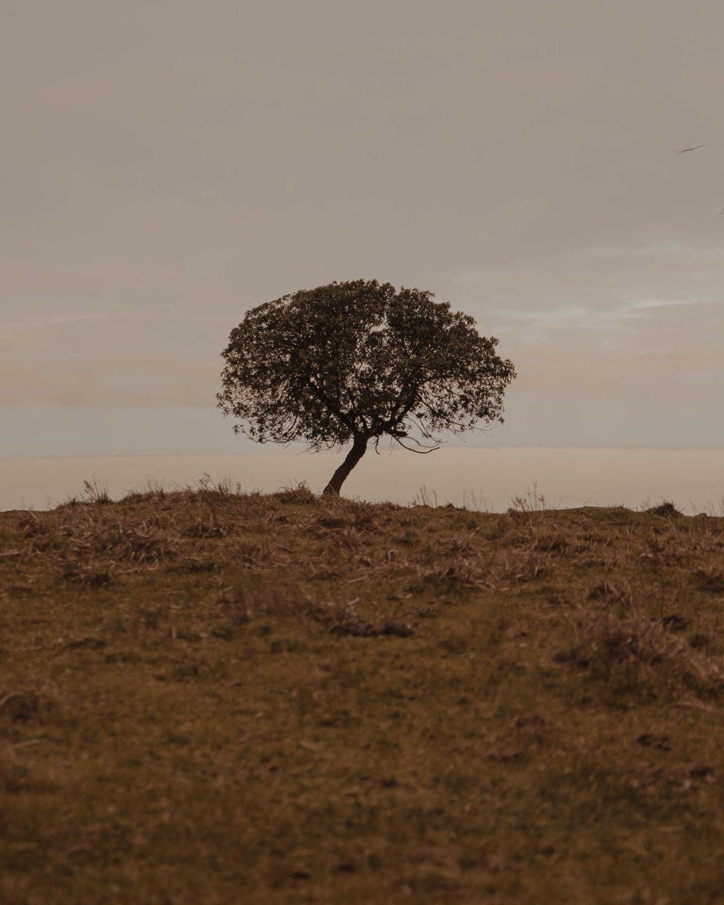 IGNANT-Photography-Paez-5