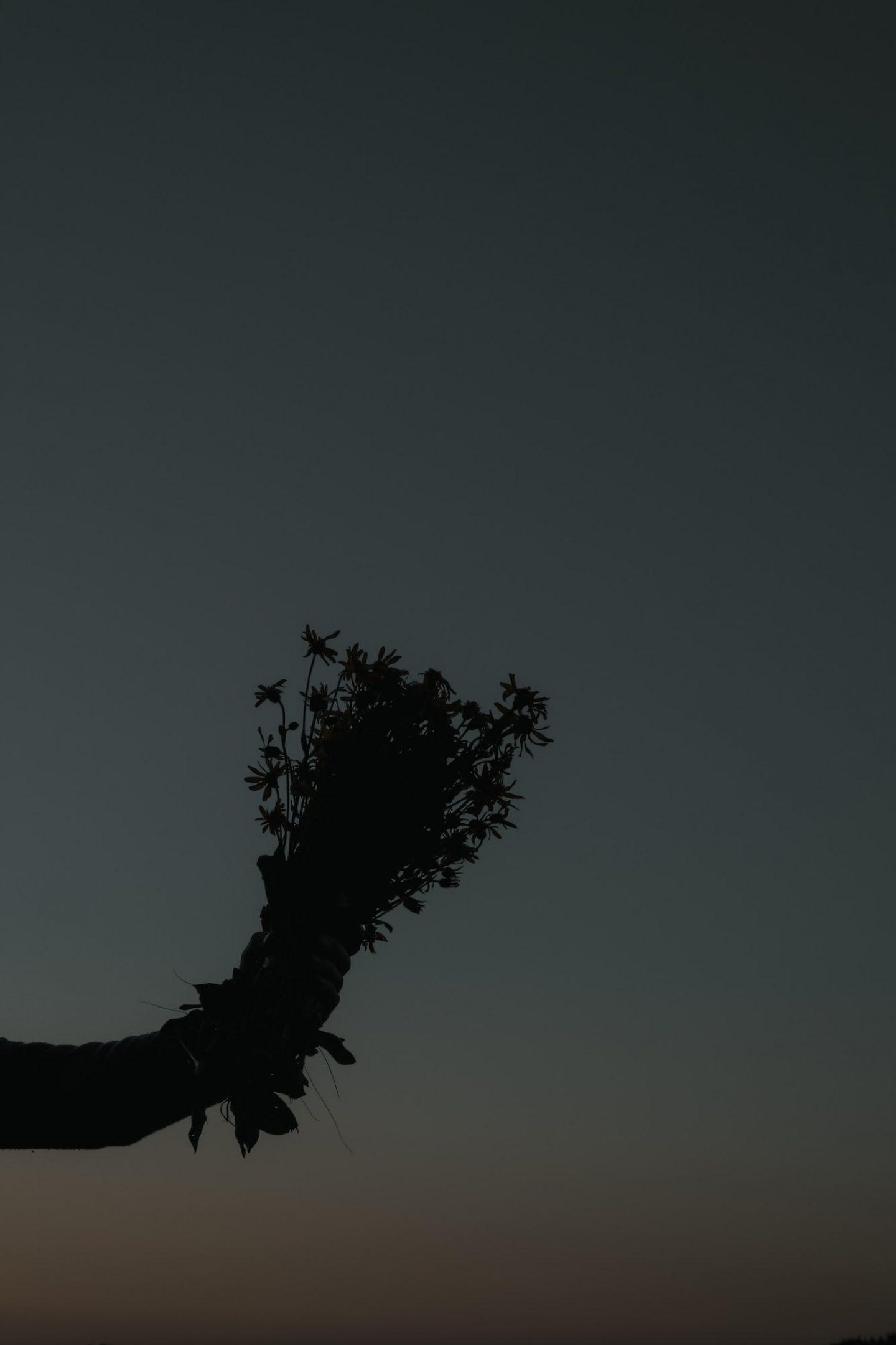 IGNANT-Dr-Hauschka-Wild-Plant-Harvest-Clemens-Poloczek-011