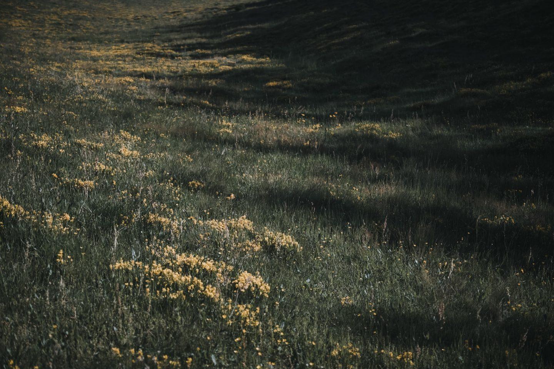 IGNANT-Dr-Hauschka-Wild-Plant-Harvest-Clemens-Poloczek-035