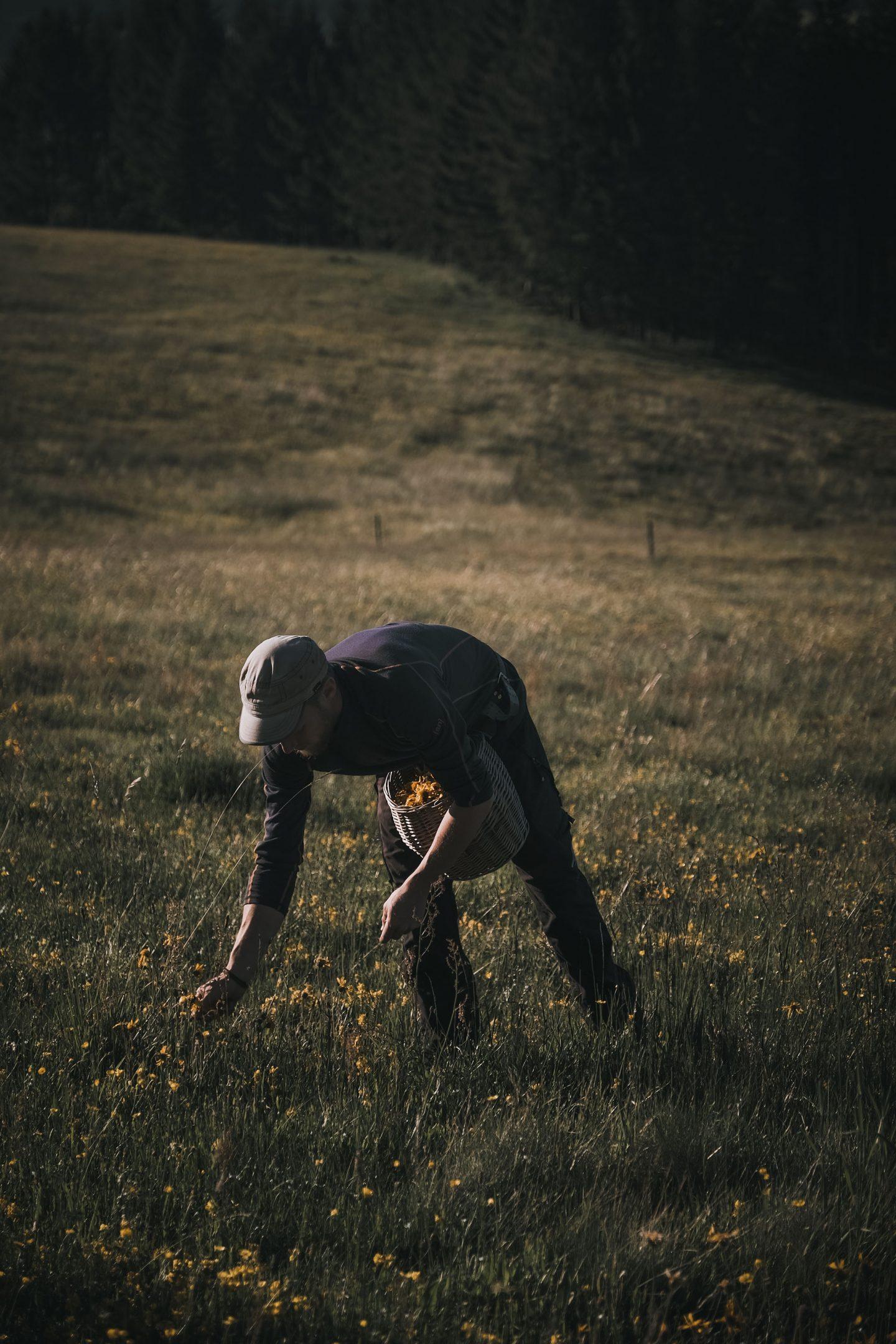IGNANT-Dr-Hauschka-Wildblumenernte-19