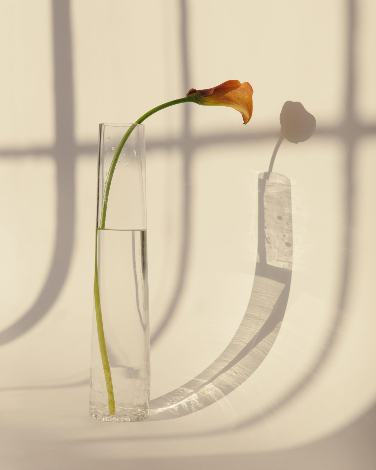 IGNANT-Photography-DavidUrbanke-12
