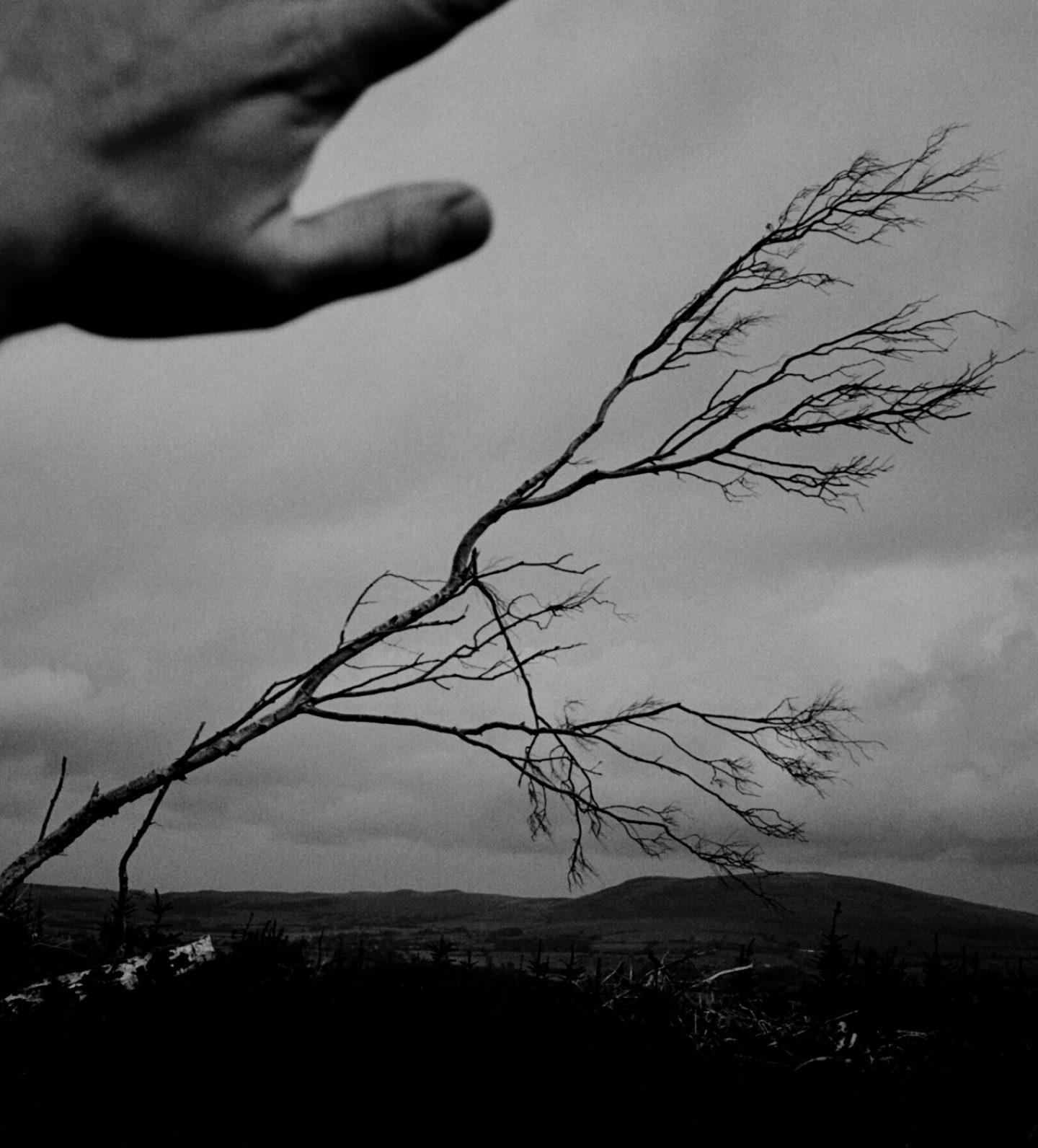 IGNANT-Photography-Jack-Davison-New-03