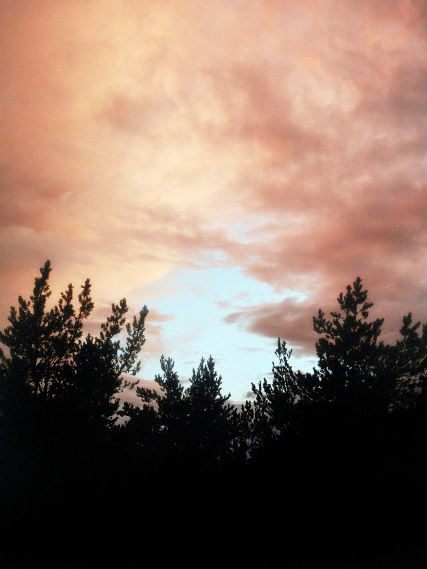 IGNANT-Photography-Jacques-Brun-Sunset-Garden-03