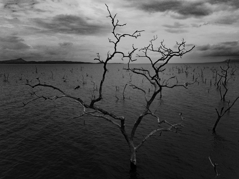 IGNANT-Photography-Jeremy-Snell-Boys-Of-Volta-011