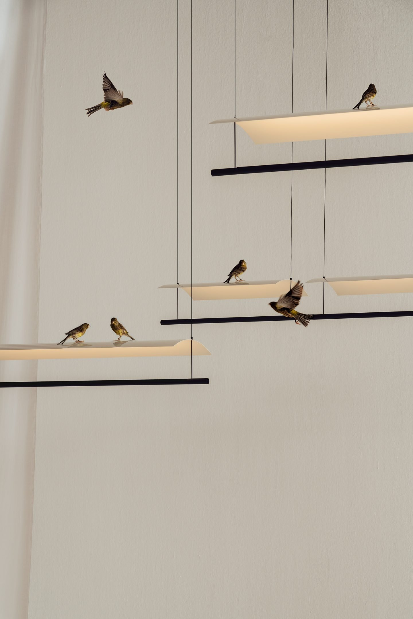 IGNANT-Design-SantaCole-AntoniArola-Lamina-10