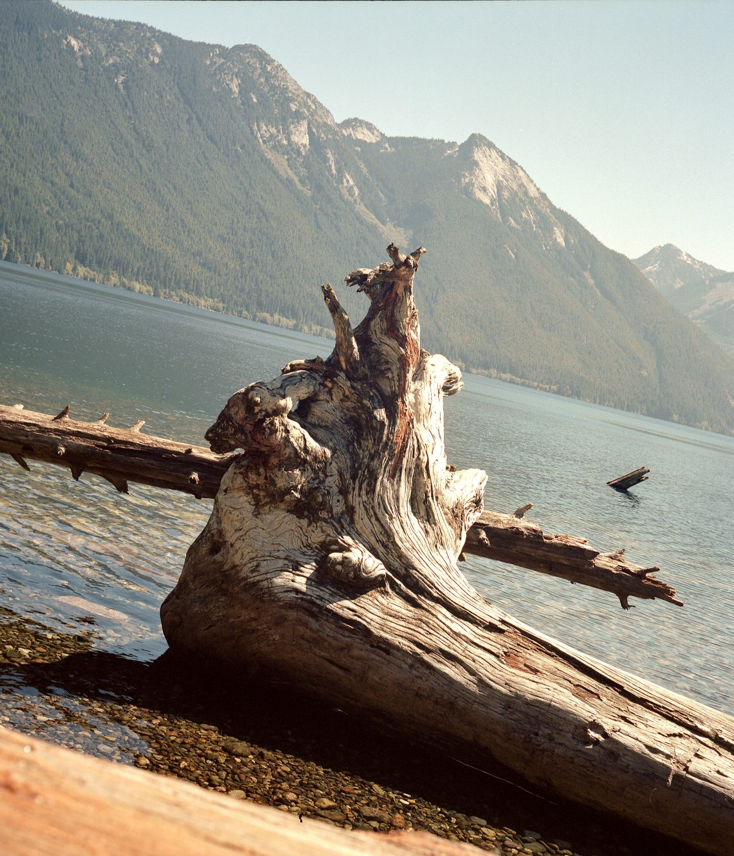 IGNANT-Photography-Alex-Fleming-British-Columbia-012-min