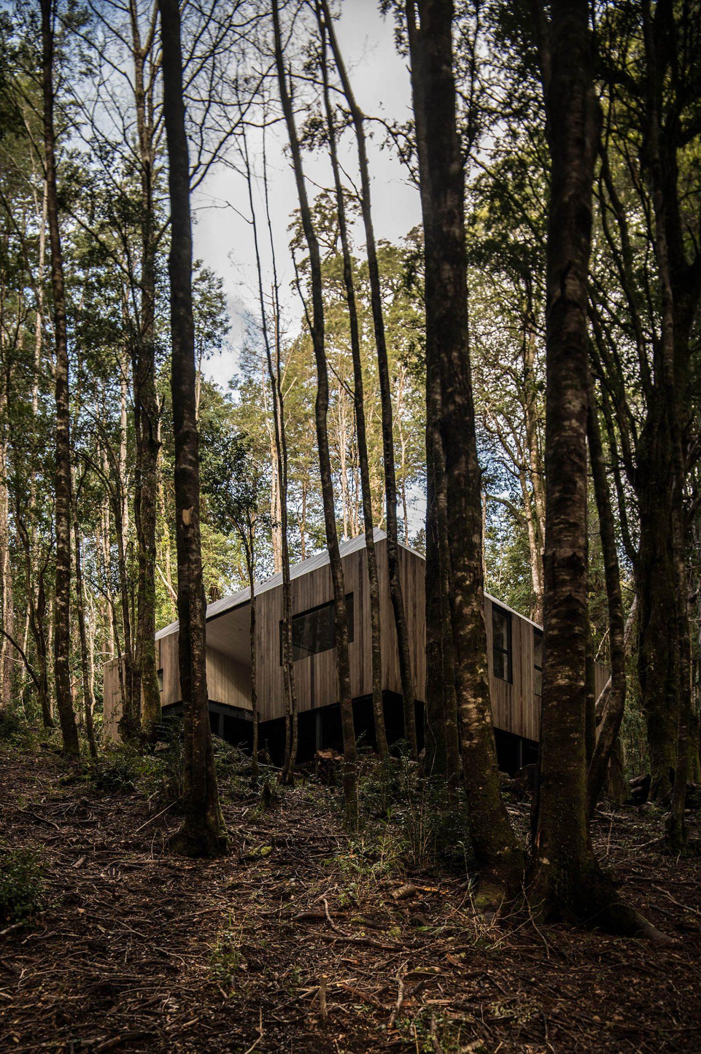 IGNANT-Architecture-SAAArquitecturaoTerritorio-RefugioImpluvio-3