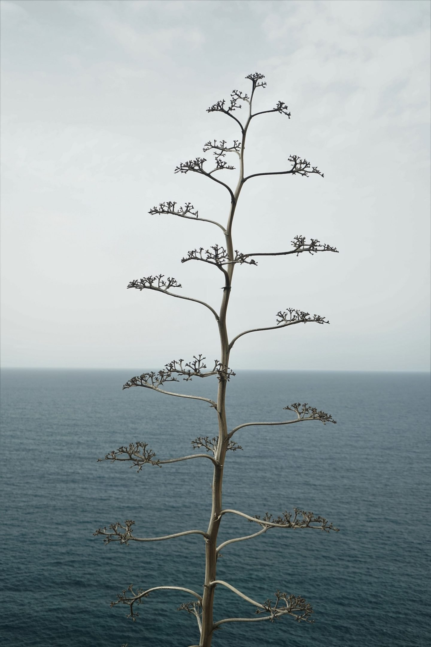IGNANT-Photography-Alessia-Morellini-03-min