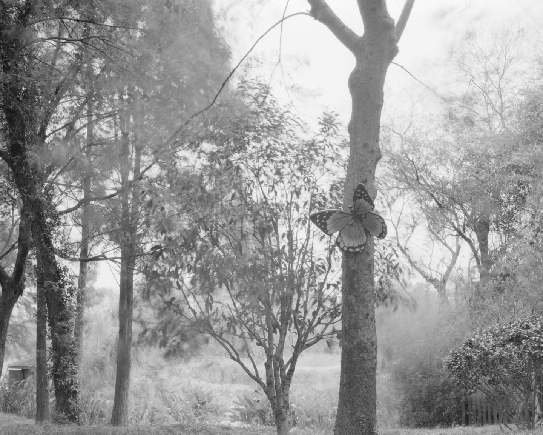 IGNANT-Photography-Xiner-Xu-05