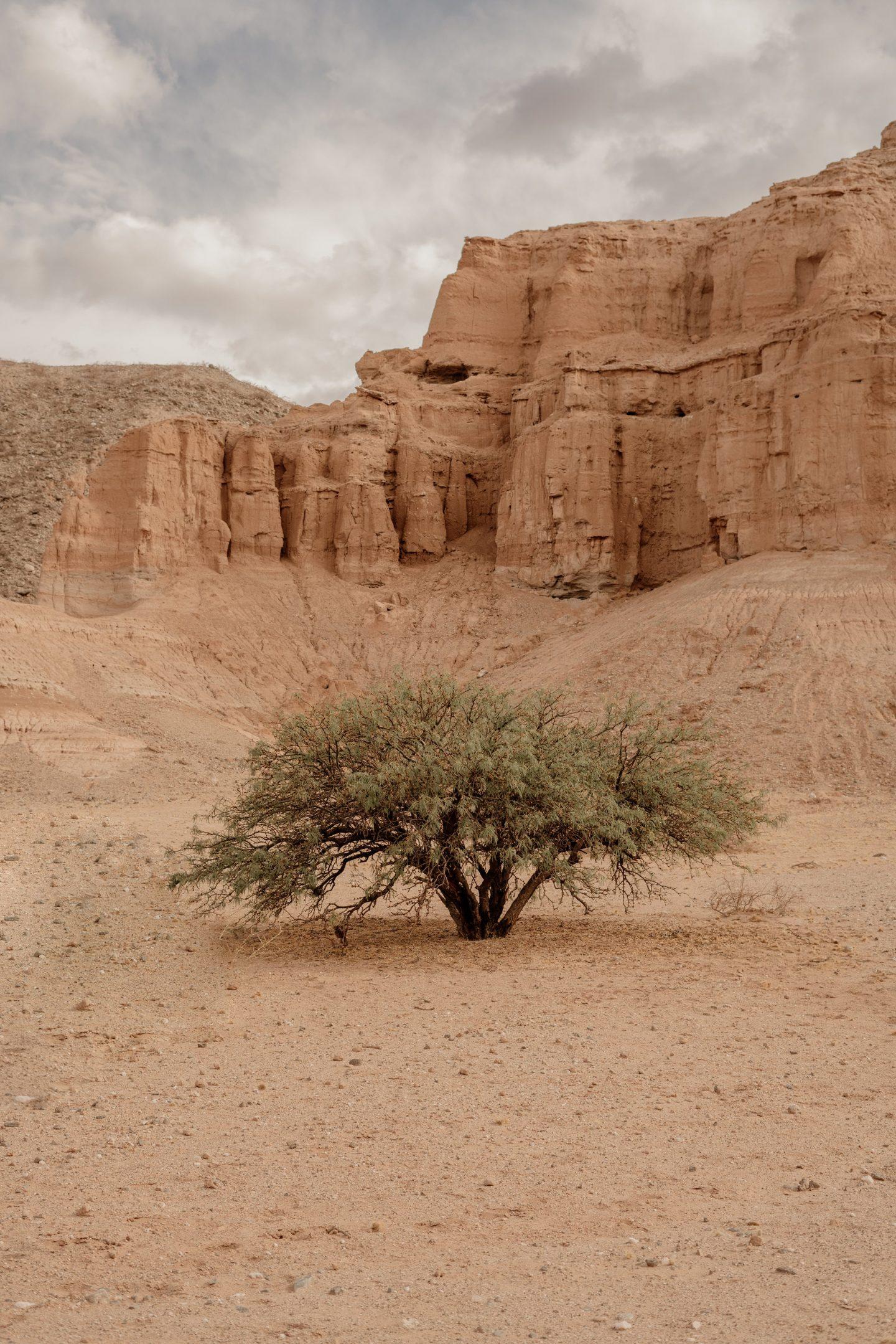IGNANT-Photography-Landscape-HoracioReyePaez-1